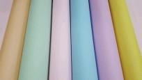 Papel Afiche S. Ajmechet 70 x 100 Cms. Colores Pastel Surtidos Paq. x 100 Hjs. Cod. Af/100/00p
