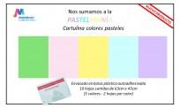 Cartulina S. Ajmechet 45 x 63 Cms. Colores Surtidos Pastel  Paq. x 10 Hjs.  Cod. Ca/10/00